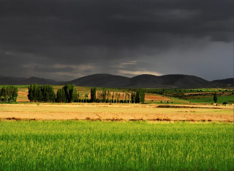 Doğa-fotoğrafı6