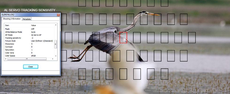 AI Servo Tracking Sensitivity Nedir? Ne işe Yarar ? AI Servo Tracking Sensitivity Nedir? Ne işe Yarar ? Yarı Profesyonel ve Canon Eos 1 D serisi üst düzey fotoğraf makinelerinde, kullanıcının seçimi ile özelleştirilebilir birçok AF ( Otofokus ) ayarı bulunmaktadır. Bunları etkin bir şekilde kullanabilirsek, uçan kuş fotoğraflarından tutun, […]