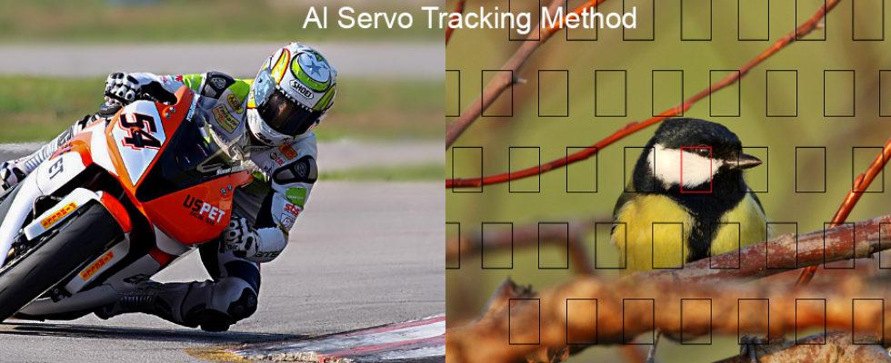 Al Servo Af Tracking Method Nedir? Al Servo Tracking Method yani Otofokus takip Metodu. Continuous Af Track ve Main Focus şeklinde iki seçenekten oluşan bu ayar kısmında, fotoğraf makinemize, netleme yaptığımız alan için yardımcı af noktalarını kullanarak takibi bırakma derken ya da tam tersi, kadrajımıza girebilecek diğer bir objeye öncelik […]